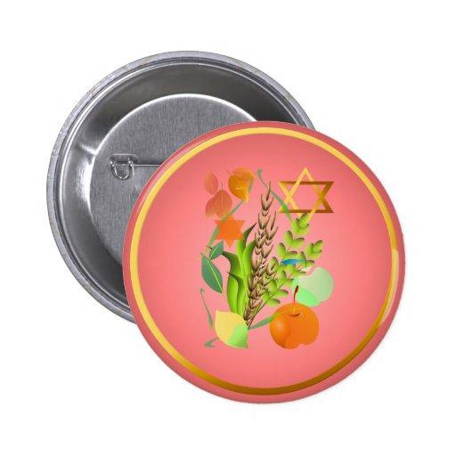 Botón del Passover Seder_2 Pins
