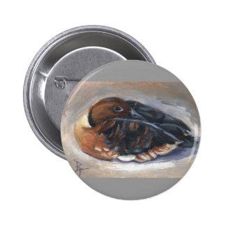Botón del pato que silba que vaga pins