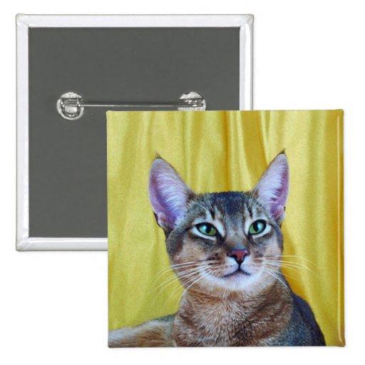 Botón del pedigrí del gato