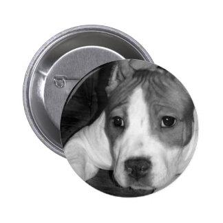 Botón del perrito de Pitbull Pin