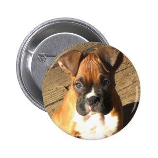 Botón del perrito del boxeador pins