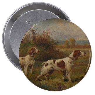 botón del perro de aguas de Bretaña, grande