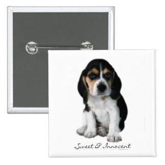 Botón del perro de perrito del beagle pin cuadrado
