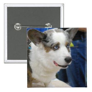Botón del perro del Corgi Galés de la rebeca Pin Cuadrado