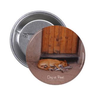 Botón del perro en descanso pin redondo de 2 pulgadas