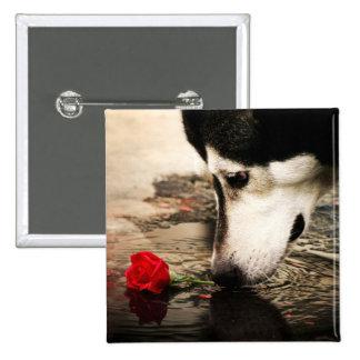 Botón del perro y del rosa rojo pins