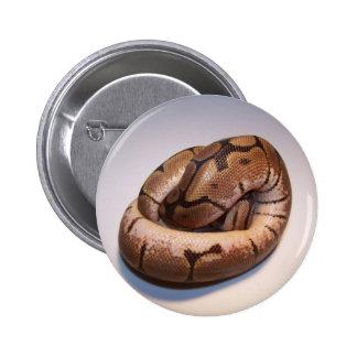 Botón del pitón de la bola de la araña pin