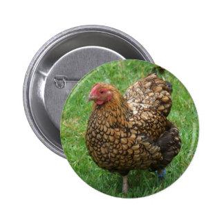 Botón del pollo pin redondo de 2 pulgadas