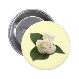 Botón del rosa blanco pins