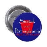 Botón del senado de Joe SESTAK