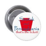 Botón del senado de Joe SESTAK Pins