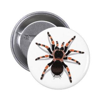 Botón del Tarantula Pin Redondo De 2 Pulgadas