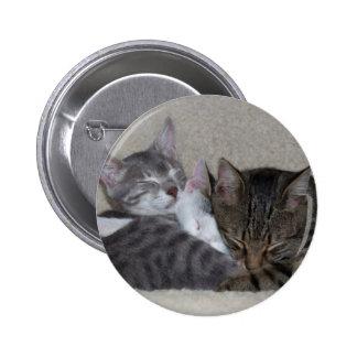 Botón del trío del gato pin redondo de 2 pulgadas