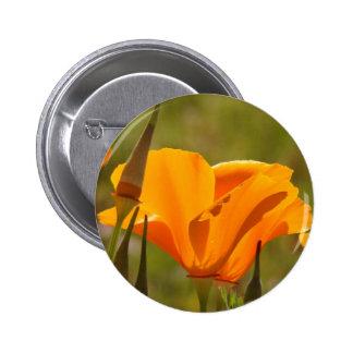 Botón del Wildflower de la amapola Pin