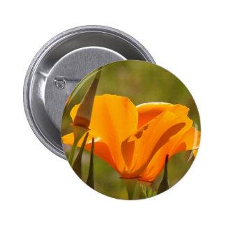 Botón del Wildflower de la amapola Pins
