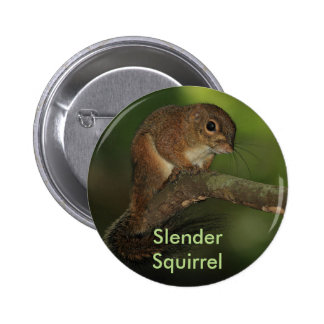 Botón delgado de la ardilla pin redondo de 2 pulgadas