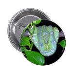 Botón esmeralda de BoA-Morticia del árbol Pins