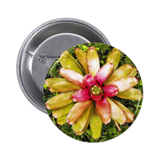 Botón exótico de la flor del jardín pin