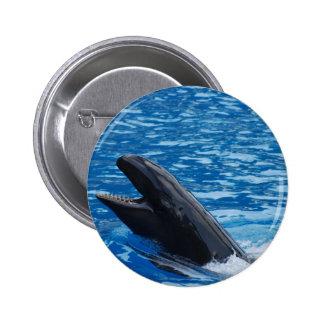 Botón falso de la orca pin