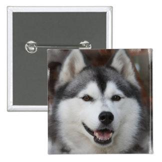 Botón fornido del cuadrado del perro pins