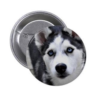Botón fornido del perrito
