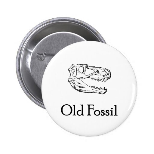 Botón fósil viejo pin