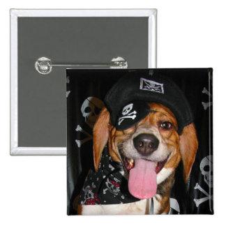 Botón gótico del perro del pirata del beagle pin cuadrado