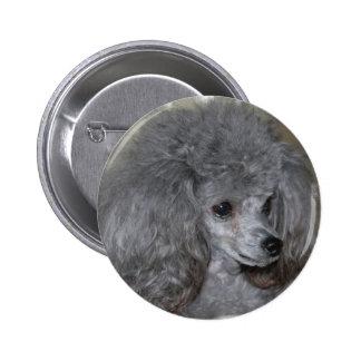 Botón gris del caniche