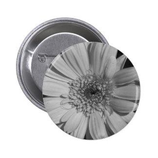 Botón gris del Gerbera Pins