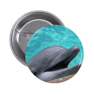 Botón hambriento del delfín pins