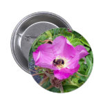 Botón hermoso de la abeja pins
