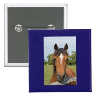 Botón hermoso del caballo, perno, idea del regalo pin cuadrado