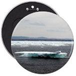 Botón hermoso del iceberg pin