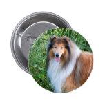 Botón hermoso del retrato del perro del collie, id pins