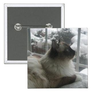 Botón Himalayan del gatito de la nieve del navidad Pin