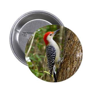 Botón hinchado rojo de la pulsación de corriente pins