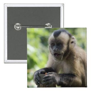 Botón juguetón del mono pins