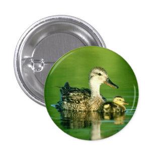 Botón lindo de los patos