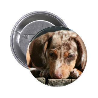 Botón lindo del perrito de Daschund Pin