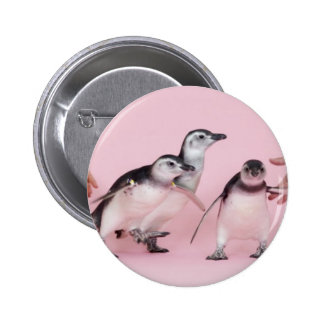 botón lindo del pingüino pin redondo de 2 pulgadas