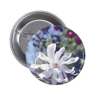 Botón luminoso de la floración de la magnolia de