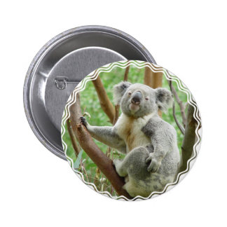 Botón mullido de la koala pin