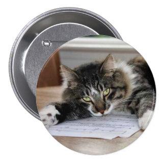 Botón musical del gato pin redondo de 3 pulgadas