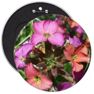 """Botón o insignia del Wallflower de la """"alegría con Pins"""