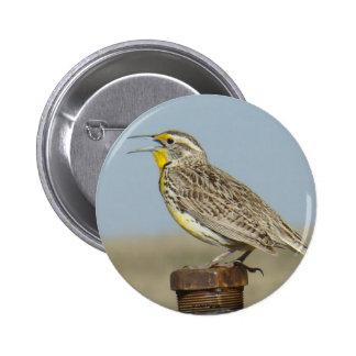 Botón occidental de B0006 Meadowlark Pin Redondo De 2 Pulgadas