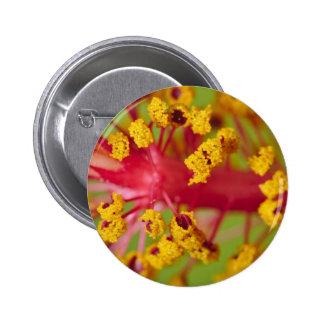 Botón: Polen dulce Pin Redondo 5 Cm