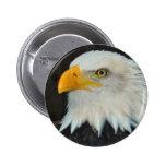 Botón principal de Eagle Pins