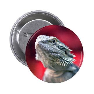 Botón principal del dragón pins
