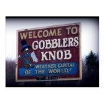 Botón Punxsutawney, Pennsylvania de los Gobblers Postal