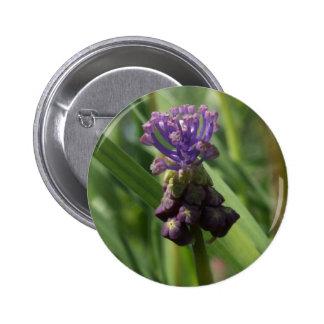 Botón púrpura de la flor pin